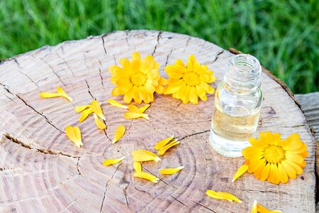 calendula essential oil near the yellow flowers of calendula on a wooden background in nature. Extract of tincture of calendula. Medicinal plants Reklamní fotografie