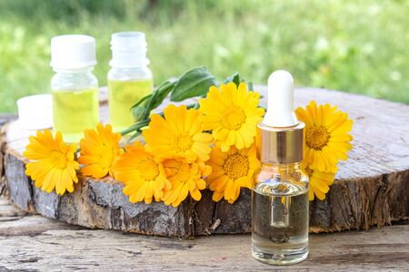 Aromatherapy essential oil with calendula flowers on a wooden background in nature. Extract of tincture of calendula. Medicinal plants.