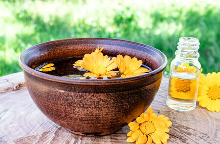 Aromatherapy essential oil with calendula flowers on a wooden background in nature. Extract of calendula tincture in a bowl. Medicinal plants.
