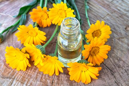 Bottle of calendula oil on a wooden background. Extract of tincture of calendula. Medicinal plants. Reklamní fotografie