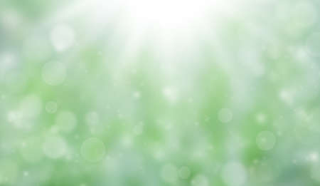 Summer or autumn soft colored abstract background. Bokeh on a green blurred background.