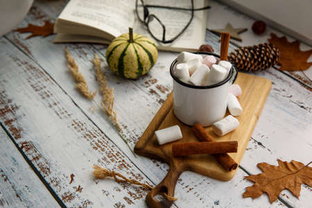 mug of cocoa with marshmallows, book and pumpkin on the windowsill 写真素材