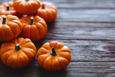 Diverse assortment of pumpkins on a wooden background. Autumn harvest. Imagens