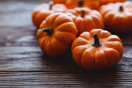 Diverse assortment of pumpkins on a wooden background.