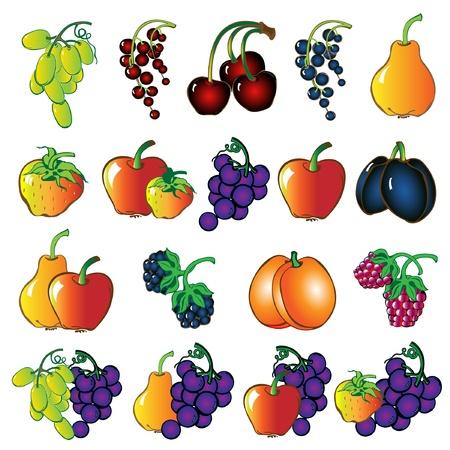 fruit set Illustration