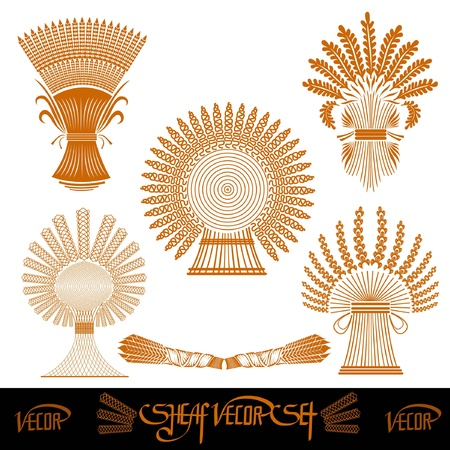 five sheaf silhouetes of wheat Stock Vector - 18181194