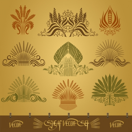 sheaf silhouette set with ear and hop pattern Vector