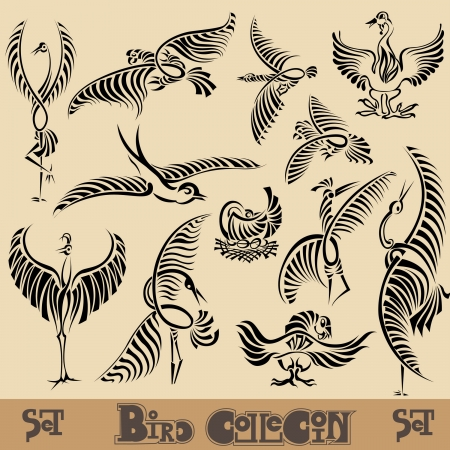 phoenix bird: bird silhouette set