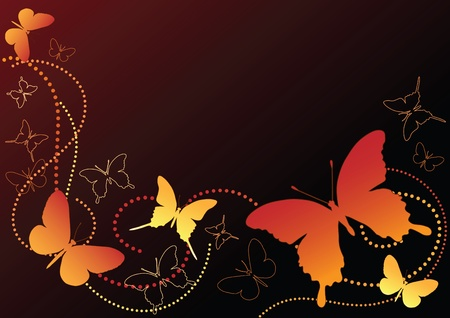curlicue:  Butterfly on the black. Vector illustration.