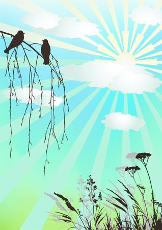 grass silhouette: Clear day.  Early spring. Vector illustration.
