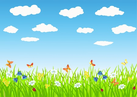 Meadow. Summer morning. Vector illustration. Stock Vector - 11647753