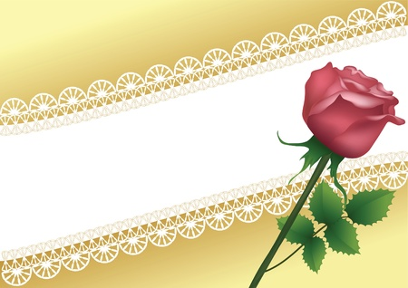 Background with lace and rose. Vector illustration. Vector