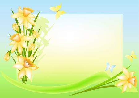 Bloemen achtergrond met plaats voor uw tekst. Narcissen. Vector illustratie. Vector Illustratie