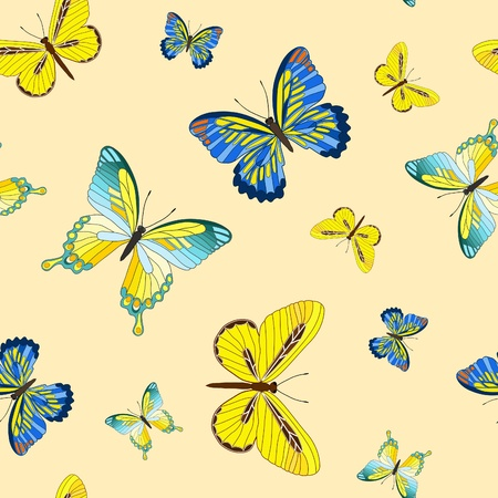 butterflies flying: Seamless with butterfly. Vector illustration.