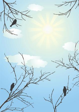 birds  silhouette: Clear day. Morn. Vector illustration. Illustration