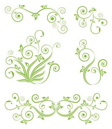 Decorative floral elements on the white.