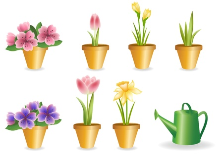 Gardening set.  Blossom flower.  Stock Vector - 12485690