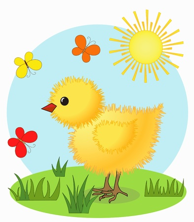 Chicken and butterfly  Cartoon  Vector