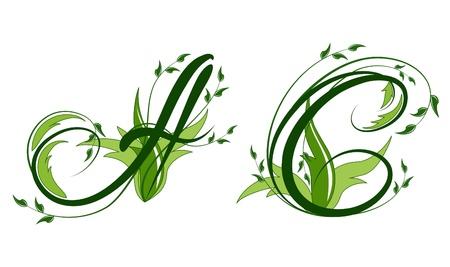 uppercase: Las letras may�sculas con adornos florales