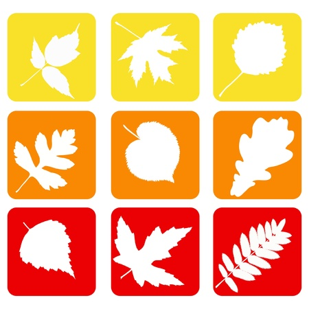 Set nature icons    Stock Vector - 13671593