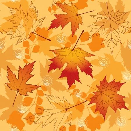 autumn leaf: Autumn seamless   Illustration