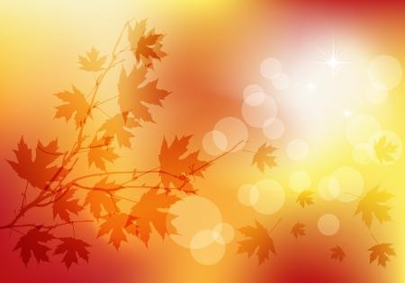 秋の透明な背景