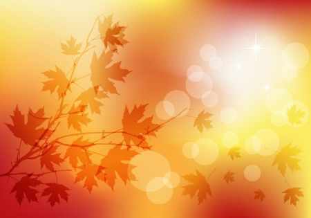 Autumn transparent background Illustration