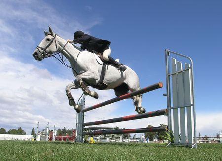 salto de valla: Cuatro fallos