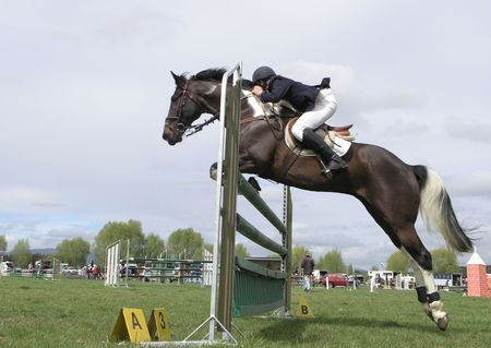 A horse going up over a jump