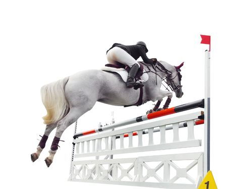 Show Jumper over Bars Stock Photo