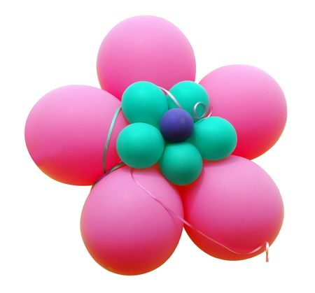 ble: Pink Balloon Flower isolated  Stock Photo