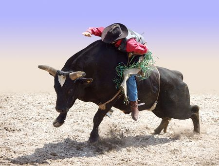 Cowboy Riding a Bull partial isolation with path Stock Photo - 5792335