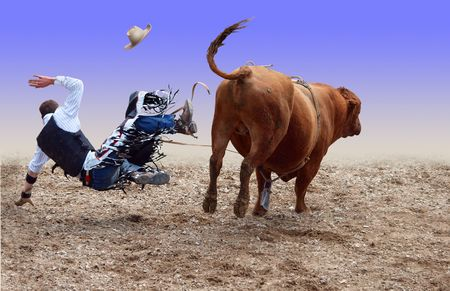 arena rodeo: Cowboy Falling of a Bucking Bull