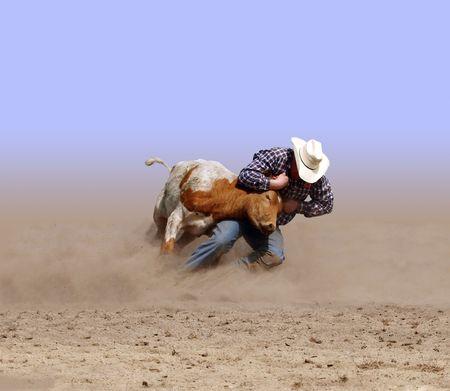 Cowboy Wrestling a Texas Longhorn Steer