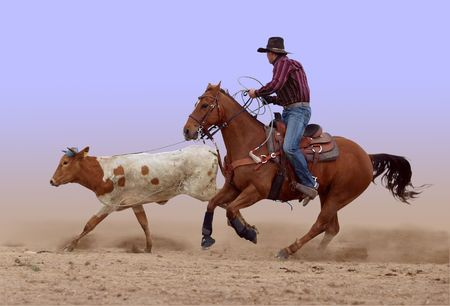 rodeo cowboy: Cowboys lasso misses its mark         Stock Photo