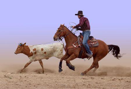 vaquero: Lazo del vaquero pierde su marca  Foto de archivo