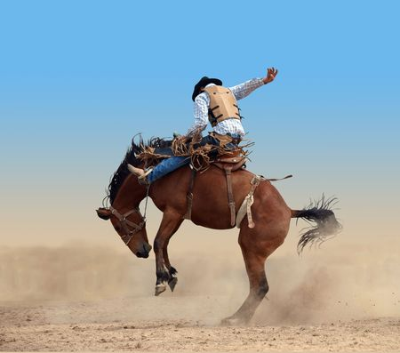 cowboy on horse: Bucking Rodeo Horse isolated Stock Photo