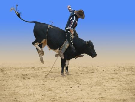 Bull rider isolated