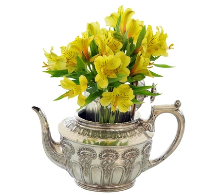 Silver Teapot with Bunch  of Yellow Flowers isolated  photo