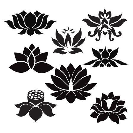 Flores Vector Lotus siluetas. Conjunto de ocho ilustraciones vectoriales. - Ilustración sobre fondo blanco
