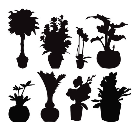 formal garden: Vector Decorative of eight Potted plant silhouette collection  isolated on white. Illustration