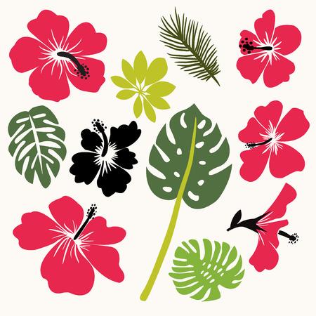 Conjunto de hojas tropicales y flores de hibisco flor hawaii aislados sobre fondo blanco. ilustración vectorial