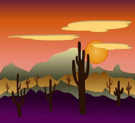 desert sunset: Desert wild nature landscapes with cactus and   mountain background. Cactus plants in desert  Mexican desert sunset.