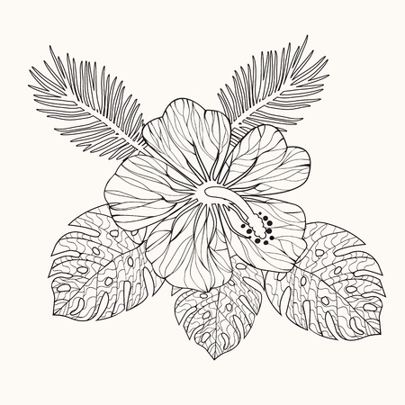 vector hibiscus flower and leaves hand drawn in black and white outline for coloring page - Hibiscus Flower Coloring Page