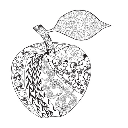 design drawing: Monochrome Apple style for coloring book. Hand Drawn Decorative Fruit illustration
