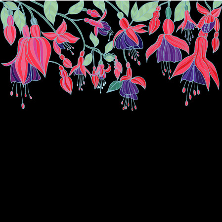 flores fucsia: Attractive summer garden background Hand drawn  Beauty Floral texture with Fuchsia flowers illustration