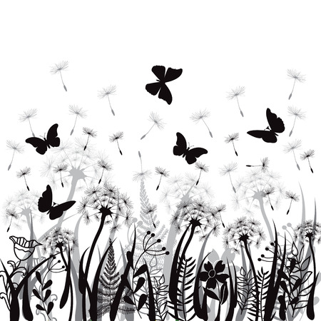 wild meadow: Nature background with meadow grass, wild herbs,,dandelions and butterflies on white backdrop