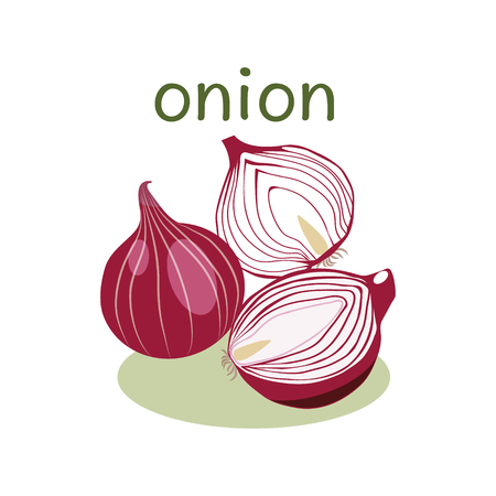 onions: Red Onion Isolated object in flat style. Onion. Vegetable Organic food.Vector Illustration on white background.