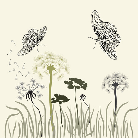 wild grass: Nature background with meadow grass, wild herbs,dandelions and butterflies on white backdrop
