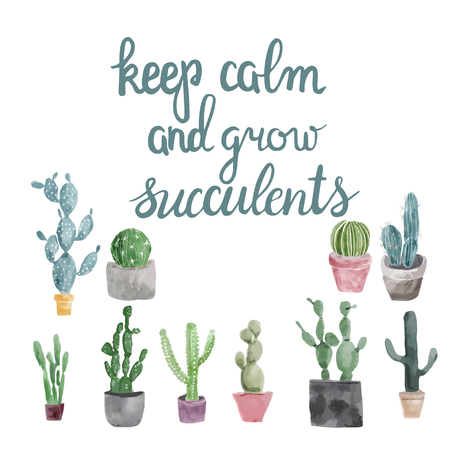 Hand drawn Set of cactus, succulents and calligraphy quote keep calm and grow succulents.